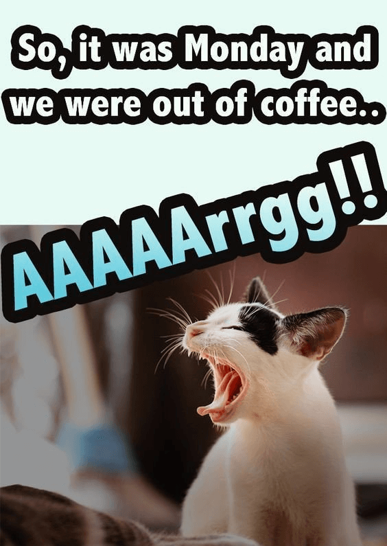 monday coffee meme