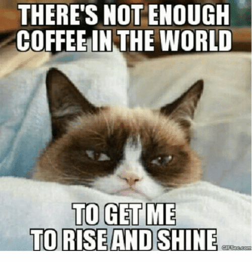 not enough coffee meme